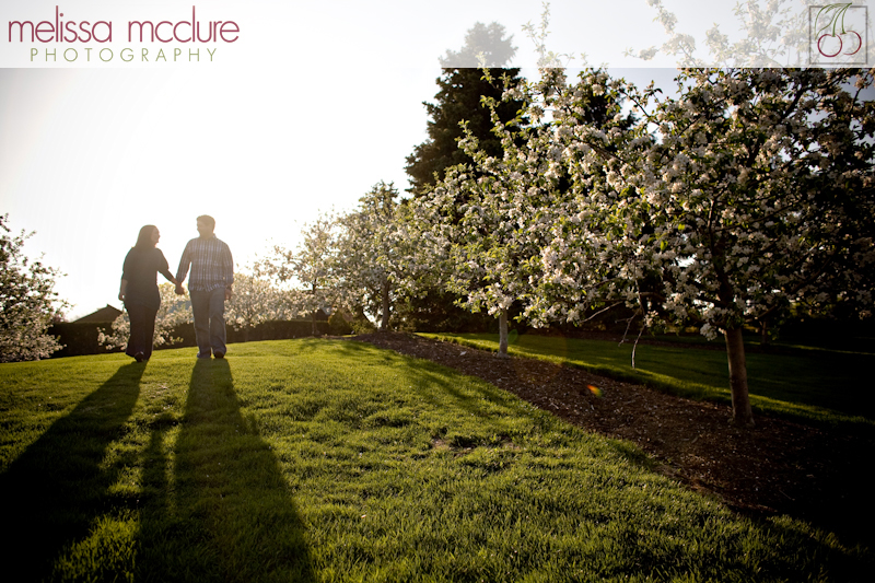 chicago_botanical_garden_engagement-002