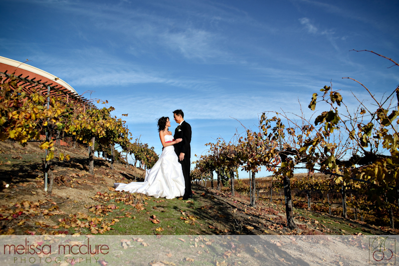 Falkner_Winery_Wedding_017