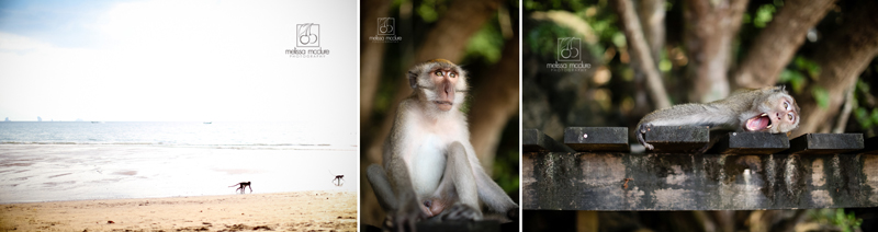 Thailand_wedding_photographer_244