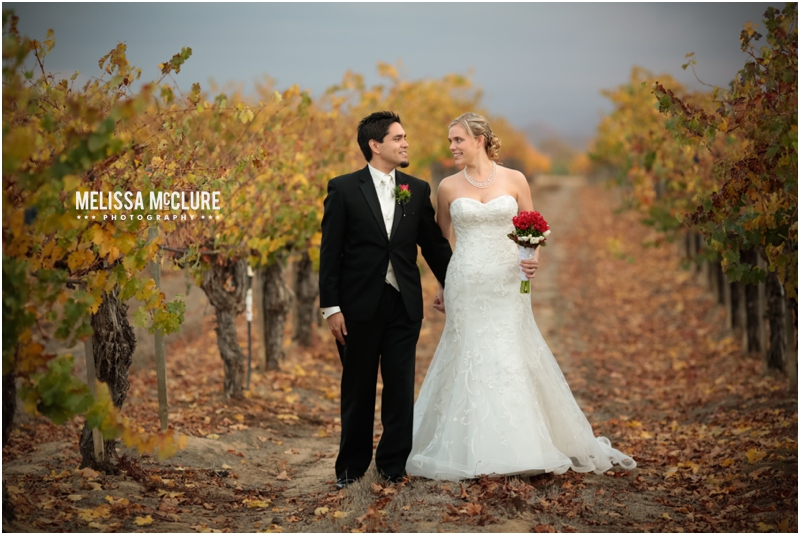 Ponte_Winery_wedding_01