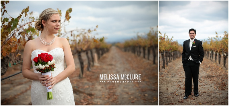 Ponte_Winery_wedding_05