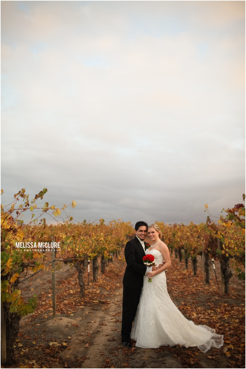 Ponte_Winery_wedding_13