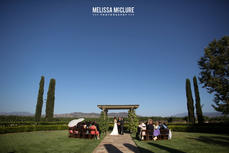 Ponte Winery Wedding 05
