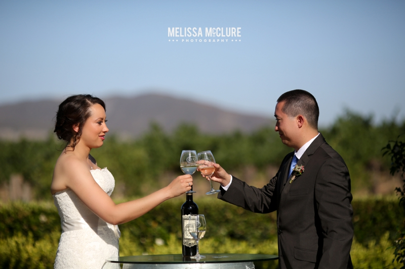 Ponte Winery Wedding 06
