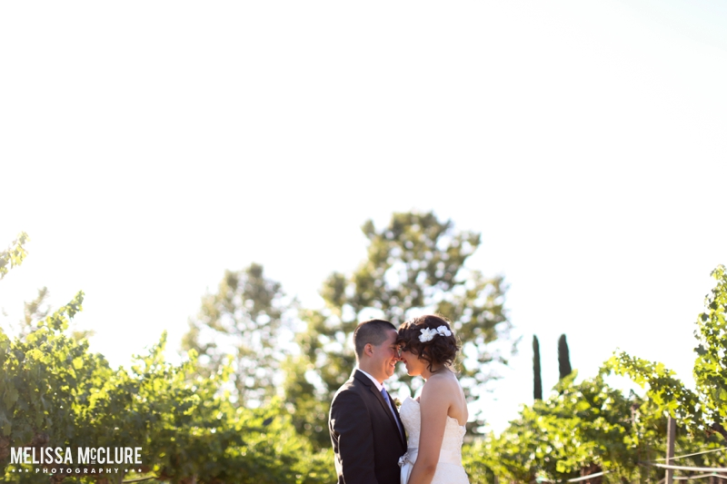 Ponte Winery Wedding 12